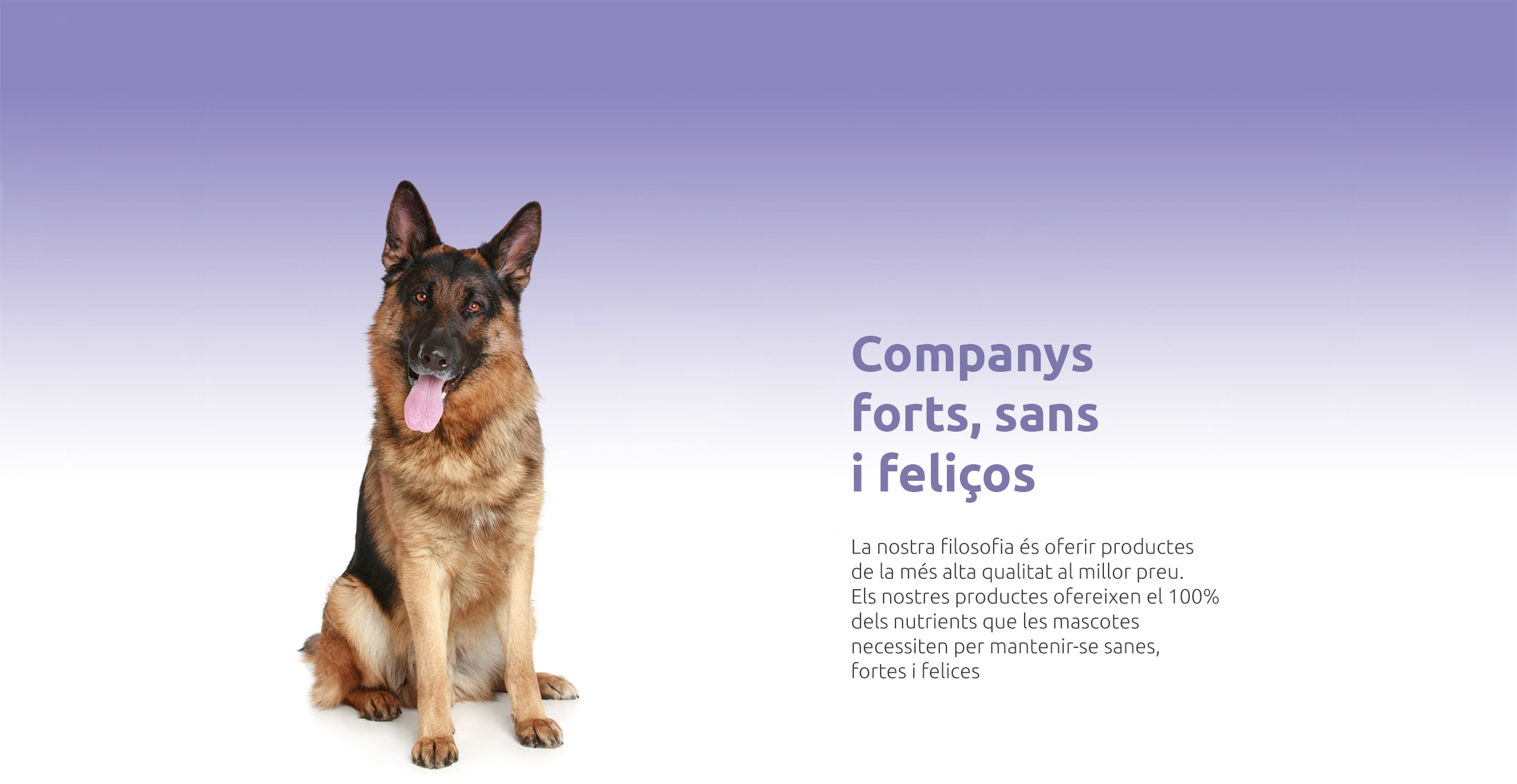 Companys forts, sans i feliços